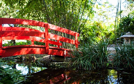 Japanese Garden red lacquered bridge